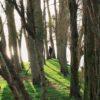 "Joanna Lemańska: ""Cool pics (8): Uroki Normandii"""