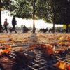 """Joanna LEMAŃSKA: """"Cool Pics (43) Jardin des Tuileries"""""""