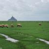 "Joanna LEMAŃSKA: "" Cool Pics (68): Mont Saint Michel"""