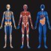 """Sylwia BORSKA: """"Druk 3D w medycynie regeneracyjnej"""""""