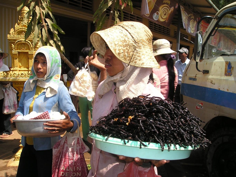 cambodia-442