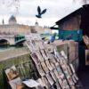 """Joanna LEMAŃSKA: """"Cool Pics (86). Paryski wczesny październik"""""""