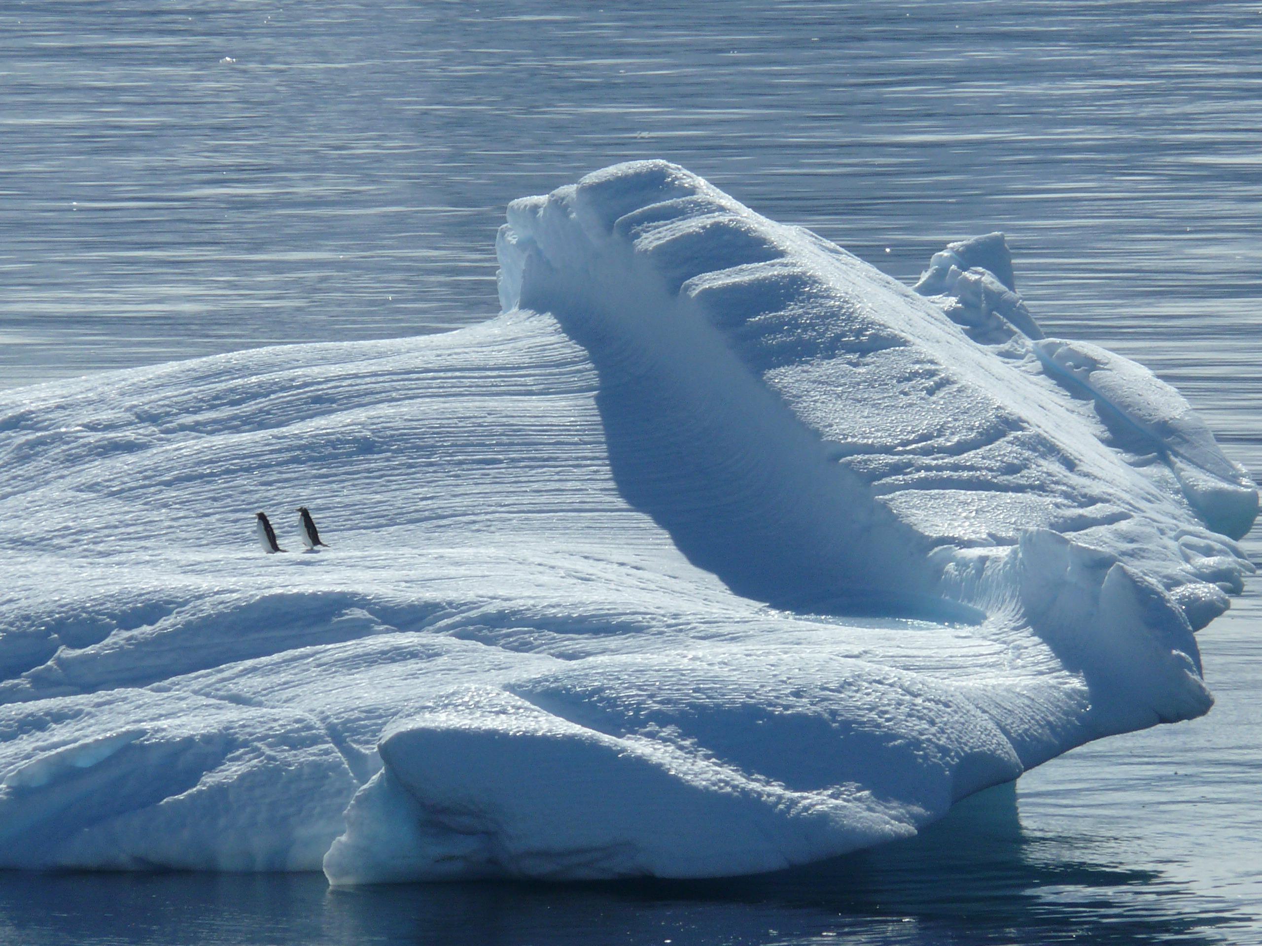 iceberg-329852