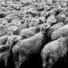 Jarosław OBREMSKI: Czy tylko mój problem z III RP?