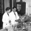 Natacha HENRY: Życie Marii Skłodowskiej-Curie to przesłanie dla kolejnych pokoleń