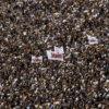 François DUBET: Enthousiasme, courage, sagesse et solidarité des hommes et des femmes libres